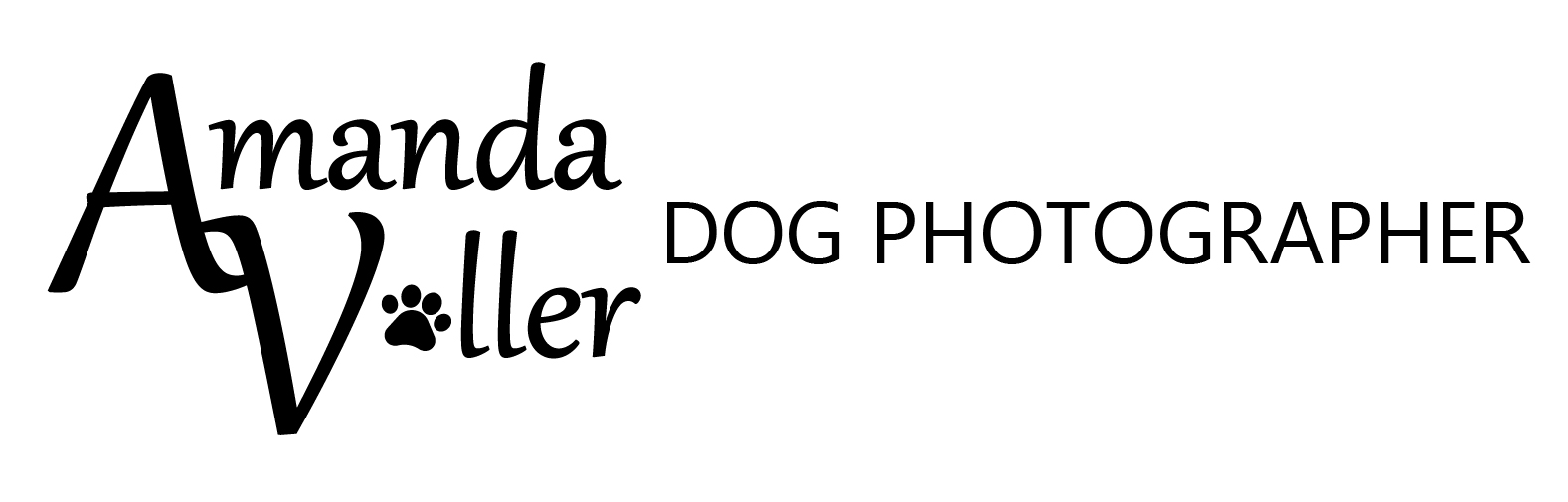 Surrey Dog photographer